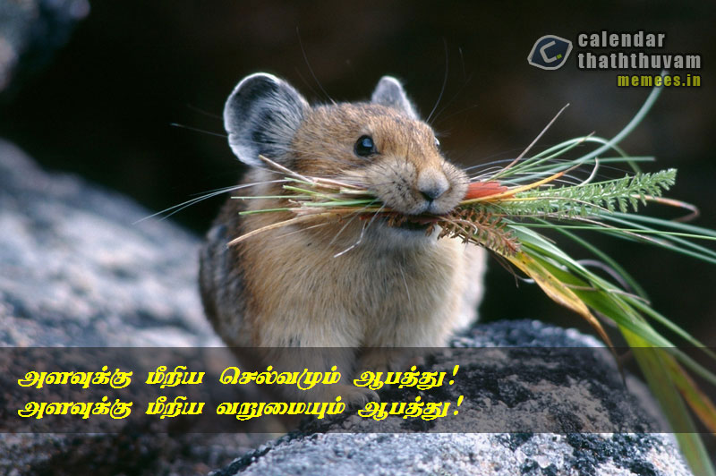 Character Quotes in Tamil