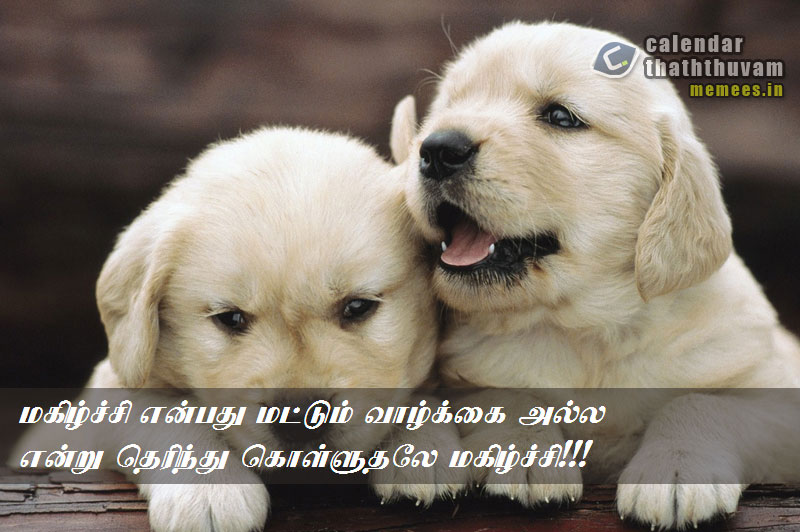 Happy Quotes in Tamil