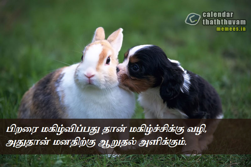 tamil philosophy happy the philosophy of happy in tamil happy