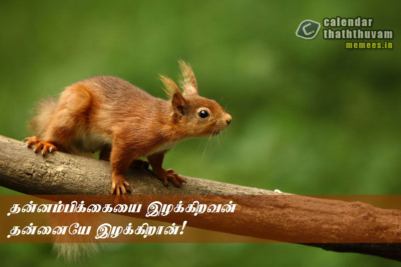 Tamil Philosophy Work The Philosophy Of Work In Tamil Work Interesting Tamil Quotes For Self Confidence