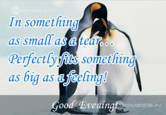 Evening Quotes Good Evening Nice Image Quotes Evening Best Wishes